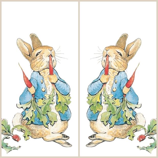 peter rabbit with mirror image